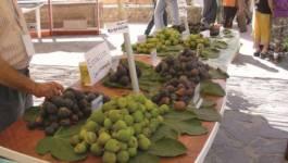 Cerises, abricots, figues : le sort peu glorieux des produits du terroir