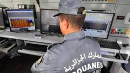 49 kg de kif saisis par les douanes à Tiaret