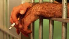 Régime carcéral en Algérie : une société de matons