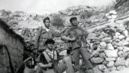 Appel aux ex-moudjahidates et moudjahidines, à leurs enfants et aux jeunes historiens algériens