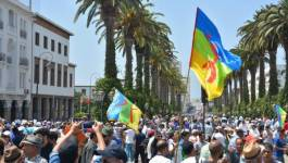 L'Assemblée mondiale amazighe dénonce les spoliations des terres et la répression dans le Rif