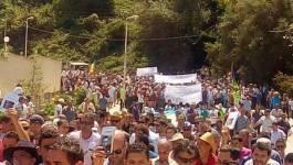 A Aokas, des milliers de citoyens ont marché un livre à la main !