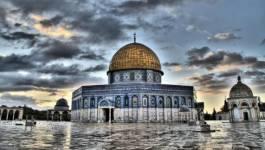 """L'Algérie condamne les """"actes criminels"""" d'Israël contre les palestiniens"""