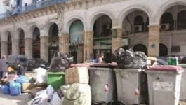 Un numéro vert pour signaler les dépôts d'ordures sauvages !!!
