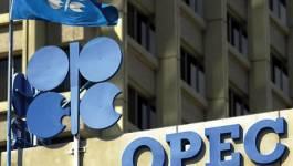 L'Opep s'inquiète du recul des prix du pétrole