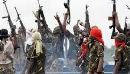 Une équipe d'exploration pétrolière enlevée par Boko Haram au Nigeria