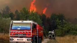 Le Sud-Est de la France en proie aux flammes