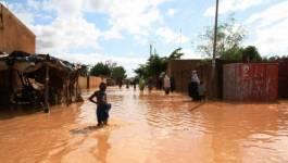 Niger : des inondations catastrophiques à Niamey