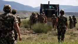 Un important lot d'armes de guerre découvert par l'ANP à Tipaza