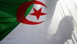 Pas de main invisible en république bananière d'Algérie
