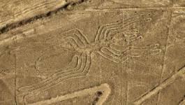 Les incroyables reliques de Nazca
