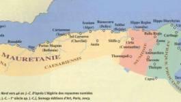 """""""Les Arabes et les Amazighs"""", dites-vous M. Boukrouh ?"""