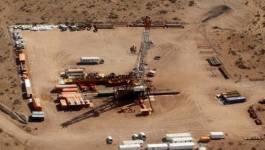Un tiers de la production du gaz est consommé en Algérie