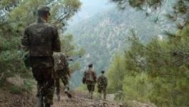 Kabylie : la pression terroriste