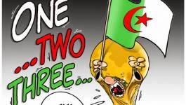 Comme d'habitude, l'Algérie a perdu.