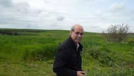 """Boussad Ouadi : """"Les canaux de diffusion du livre ont été asséchés"""""""
