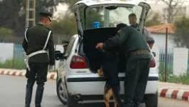 Alger : 1.373 individus présentés devant la justice en septembre