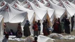 L'armée syrienne sévit aux frontières avec la Turquie
