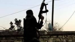 La Ligue arabe appelle à l'envoi des casques bleus en Syrie