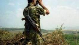 Attentat à la bombe près des Issers: Deux militaires tués et trois autres blessés