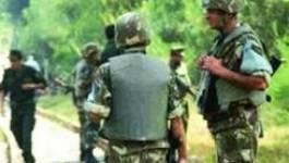 Médecin kidnappé : cellule de crise et mobilisation à Beni Douala