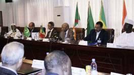 L'Afrique : en rangs dispersés contre l'Aqmi
