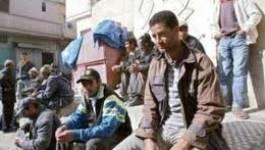 Protestation des chômeurs : Aïn El-Bia sous tension