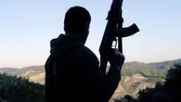 Le Qatar et l'Arabie saoudite appellent à armer l'opposition syrienne