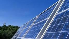 """Pierre Godonneix : """"L'Algérie doit entamer son programme des énergies renouvelables"""""""