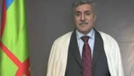 La réforme constitutionnelle en Algérie : la Kabylie n'est pas concernée