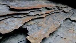 L'exploration du gaz de schiste sera lancée début 2012 en Algérie