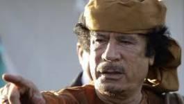 Kadhafi : le crépuscule d'un despote