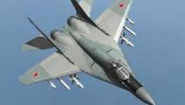 MiG 29 renvoyés par l'Algérie : un ancien PDG russe condamné