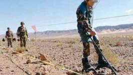 Plus de 5000 mines datant de l'ère coloniale détruites par l'ANP en novembre
