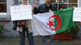 Une militante arrêtée en plein Alger... puis relâchée
