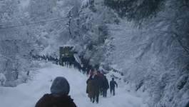 Kabylie : ce n'était pas l'apocalypse mais c'était tout comme