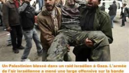 L'impuissance des pays arabes  Par Hassane Zerrouky
