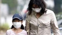 Trois cas de grippe porcine en Algérie