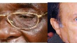 De Mugabe à Bouteflika : l'hypocrisie occidentale