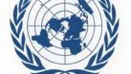 Droits de l'Homme en Algérie : les trois mauvais points  de l'ONU