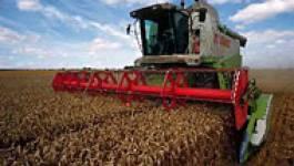 Produits alimentaires : les prix s'envolent, la facture s'alourdit et les pauvres ont faim
