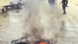 Algérie entre émeutes et Hargas : Chlef entre en éruption
