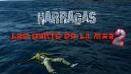 Harragas : Le Conseil des ministres adopte de nouvelles sanctions pénales