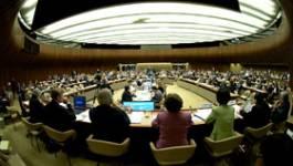 Algérie  : La réconciliation nationale sous le feu des critiques des ONG à Genève