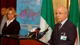 """Réunion d'Alger-UPM : la """"majorité écrasante"""" des pays demandent """"plus d'éclaircissements"""""""