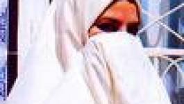 Abou Teflika, Abou Elmouthana et le juge du 13 novembre