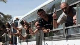 550 détenus palestiniens retrouvent la liberté