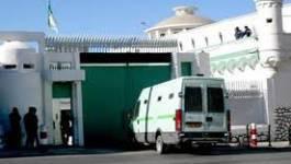 Les cadres d'ABM emprisonnés à Serkadji sont en grève de la faim