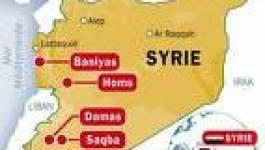 Syrie : l'armée nettoie sans pitié les villages résistants