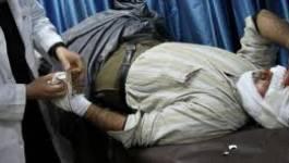 Syrie : la Ligue arabe et l'ONU dénoncent les meurtres de civils